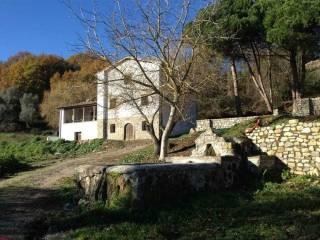 Foto - Rustico / Casale località edifizio, Viterbo
