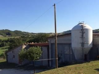 Immobile Vendita Sassoferrato