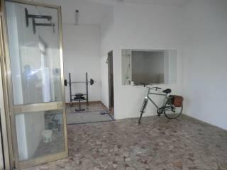 Immobile Affitto Viareggio