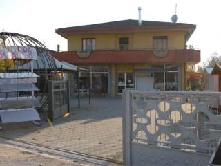 Immobile Affitto Santa Giustina in Colle