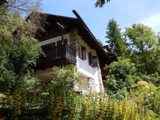 Foto - Villa via Olivo Sala, Borca Di Cadore