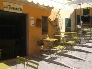 Attività / Licenza Vendita Campo nell'Elba