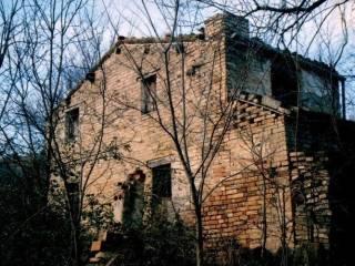 Foto - Rustico / Casale, da ristrutturare, 1560 mq, Loreto Aprutino