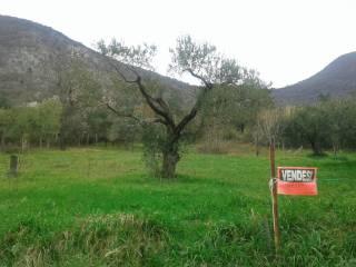 Foto - Terreno agricolo in Vendita a Marcellina