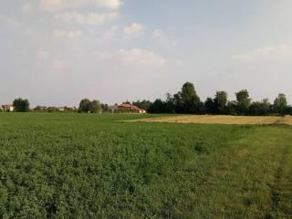 Foto - Terreno agricolo in Vendita a Vicenza