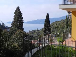 Foto - Villa Località Parco degli Ulivi 17, Zoagli