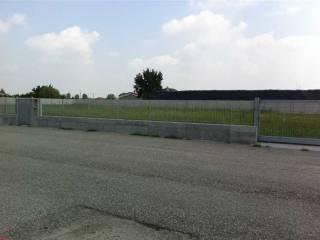 Foto - Terreno edificabile industriale a Villa Bartolomea