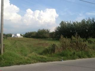 Foto - Terreno agricolo in Vendita a Mariglianella
