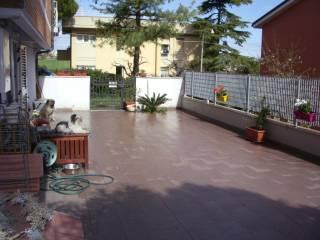 Foto - Trilocale ottimo stato, piano terra, Pinocchio, Ancona