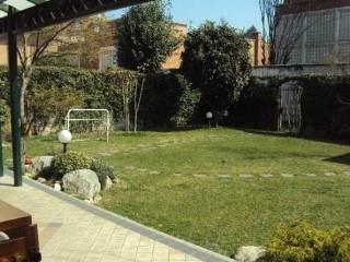 Foto - Palazzo / Stabile via fucini 5, Gallarate