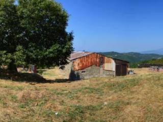 Foto - Rustico / Casale, da ristrutturare, 500 mq, Anghiari