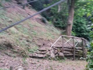 Foto - Terreno agricolo in Vendita a Tolfa