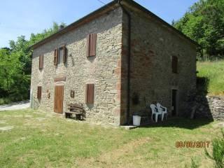 Foto - Rustico / Casale, buono stato, 100 mq, Castel San Niccolo'
