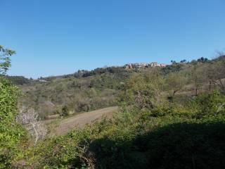 Foto - Rustico / Casale, da ristrutturare, 320 mq, Poggio, Ancona