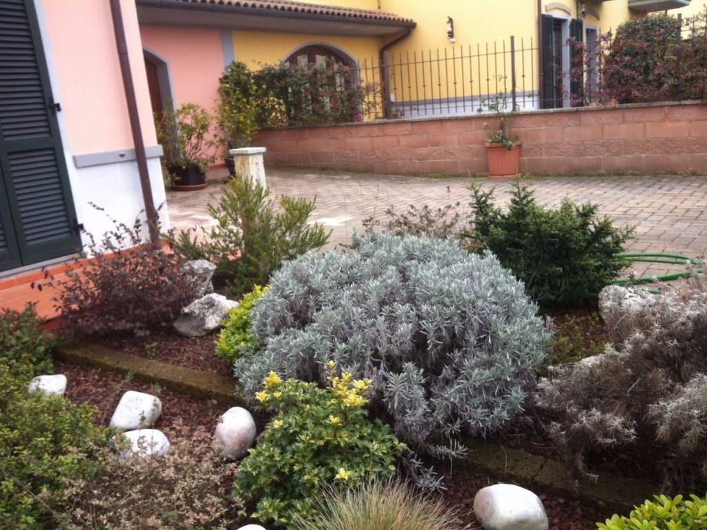 foto  Detached house via Romana, Arezzo