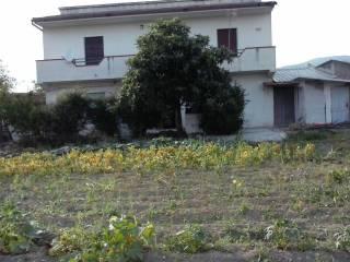 Foto - Villa Località Cardici, Sessa Aurunca