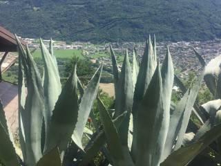 Foto - Rustico / Casale, ottimo stato, 156 mq, San Biagio, Civo