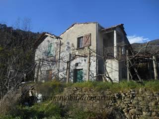 Foto - Rustico / Casale, da ristrutturare, 6000 mq, Isolabona