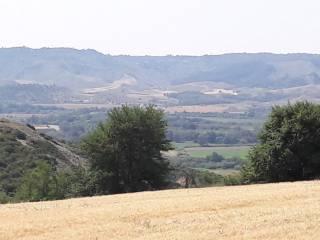 Foto - Terreno agricolo in Vendita a Pomarico