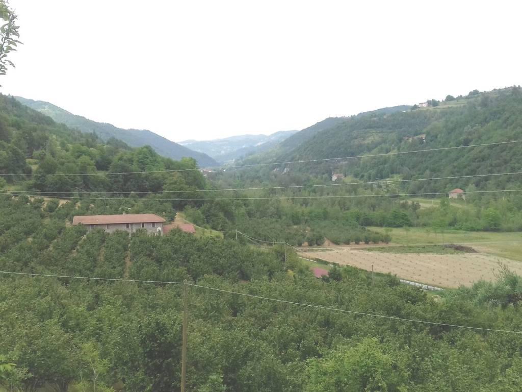 foto vista Dairy farm, good condition, 290 sq.m., Pezzolo Valle Uzzone