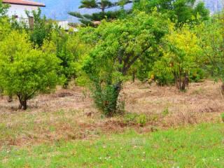 Foto - Terreno agricolo in Vendita a Trabia