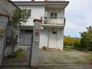 Foto - Villa unifamiliare Contrada Santa Venere, San Basile