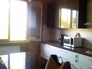 Foto - Casa indipendente 240 mq, ottimo stato, Corinaldo