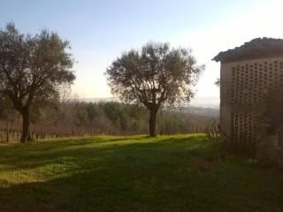 Foto - Casa indipendente 1000 mq, da ristrutturare, Maiolati Spontini
