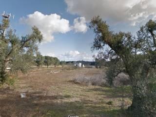 Foto - Terreno agricolo in Vendita a Mesagne