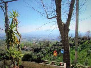 Foto - Rustico / Casale, buono stato, 200 mq, Moriano, Lucca