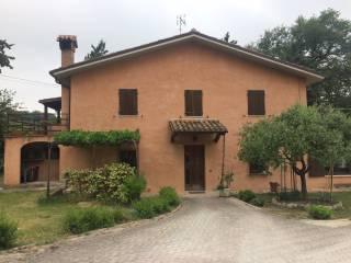 Foto - Rustico / Casale via Ca' Porneta 1, La Torre, Urbino