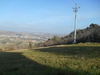 Foto - Terreno edificabile residenziale a Castelbellino