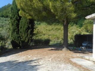 Foto - Rustico / Casale, ottimo stato, 280 mq, Castelplanio