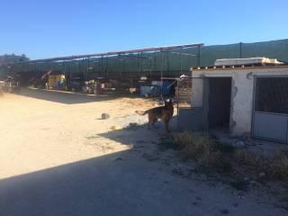 Foto - Terreno agricolo in Vendita a Ficarazzi