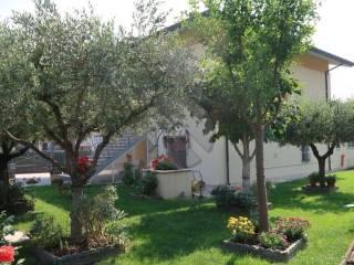 Foto - Appartamento via Campone Sala 296, Sala, Cesenatico