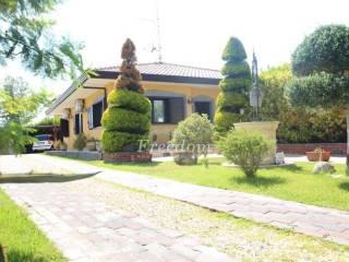 Foto - Villa via del Bosco 42, Massa Annunziata, Mascalucia