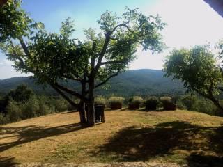 Foto - Rustico / Casale via Aretina Nord, Monte San Savino