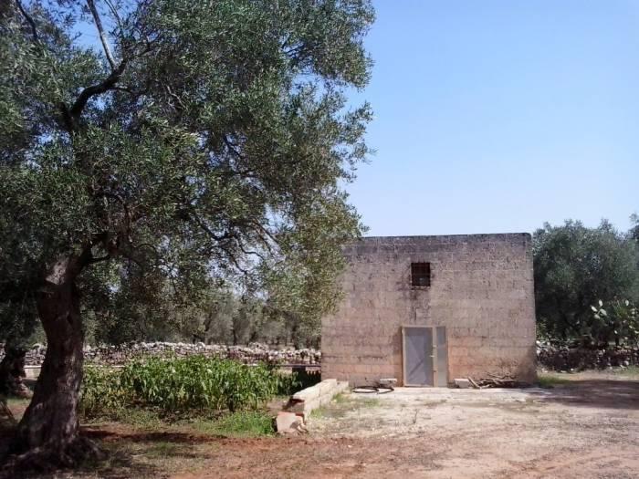foto Fabbricato Terreno agricolo in Vendita a Alessano