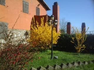 Foto - Quadrilocale Strada Statale 323, Pratini, Roccalbegna