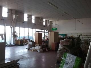 Immobile Affitto Castelnuovo Rangone