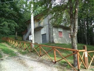 Foto - Rustico / Casale 240 mq, Apecchio
