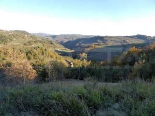 Foto - Terreno agricolo in Vendita a Bossolasco