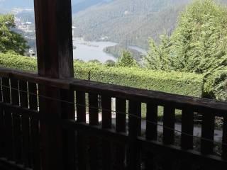 Foto - Appartamento via Cogonie, Pieve Di Cadore