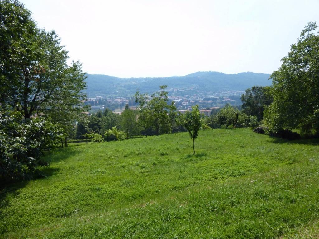 foto  Terreno agricolo in Vendita a Santa Maria Hoè