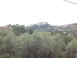 Foto - Villa Contrada Olivella, Belvedere Marittimo