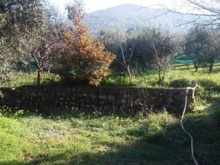 Foto - Villa, buono stato, 300 mq, Sessa Aurunca