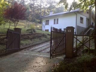 Foto - Villa Strada Provinciale Pian di Balestra, Valserema, San Benedetto Val Di Sambro