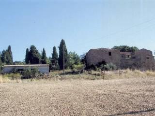 Foto - Rustico / Casale 500 mq, Pienza