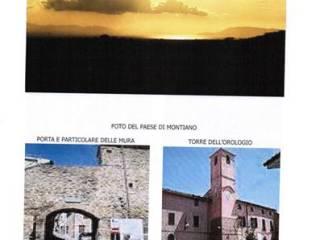 Immobile Vendita Magliano in Toscana