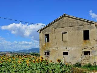 Foto - Rustico / Casale, da ristrutturare, 200 mq, Filottrano